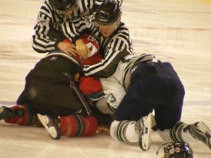 hockey_fight_by_Alyna_Dean